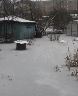 Потоп на садовых участках в Колпине объяснили засором канализации
