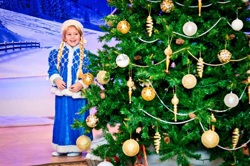 Новогодние елки 2016 в СПб